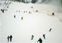 Горнолыжный курорт  Снежный