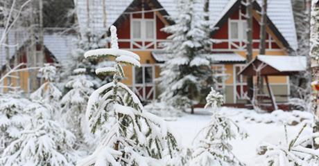Снежный  Коттеджи Экстрим бар ХХХХ Горка-бар Парк приключений Горнолыжный курорт